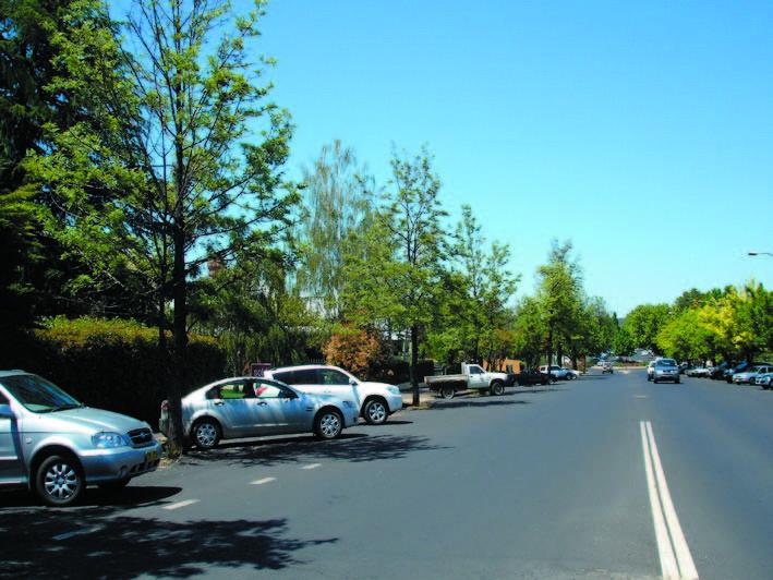 Avenue Plantings_hill st2