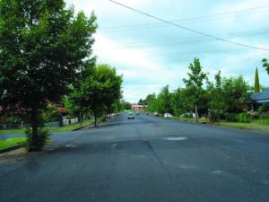 Avenue Plantings_Mclachlan st