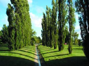 Memory Park 1