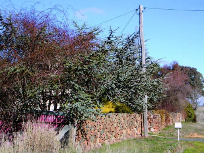 Stone Wall Burrendong Way