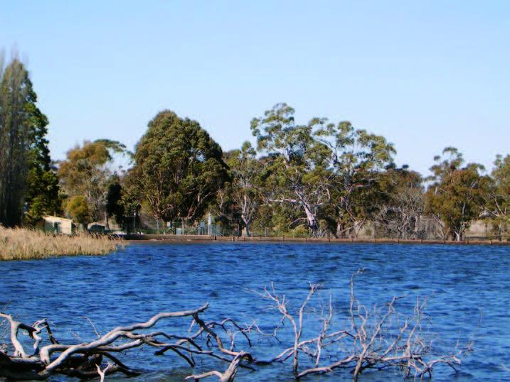 Gosling Creek Reservoir: Dam Wall