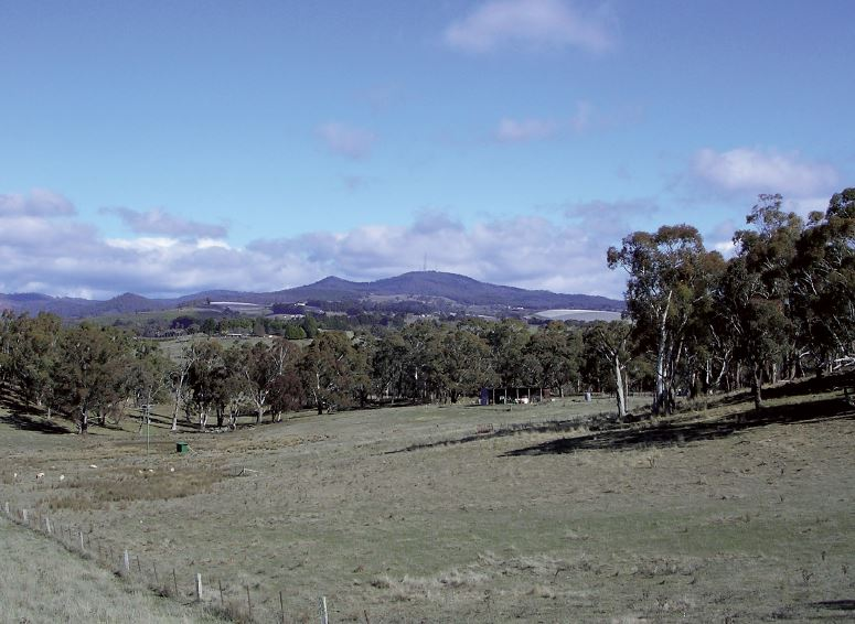 View to Mount Canobolas